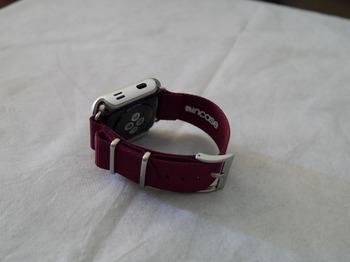 Apple Watch Series2 42mm バンド9.jpg